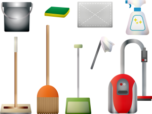 cleaning supplies for killing fleas