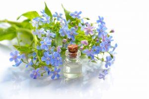 blue flowers beside a bottle
