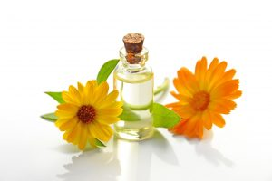 two-yellow-sunflowers-with-clear-glass-bottle-with-cork-lid