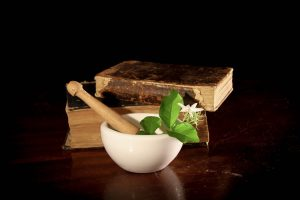 Reference to safety of natural flea product ingredients