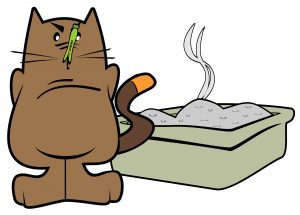 Cat with stinky litter box