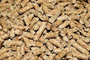 pine pellet cat litter