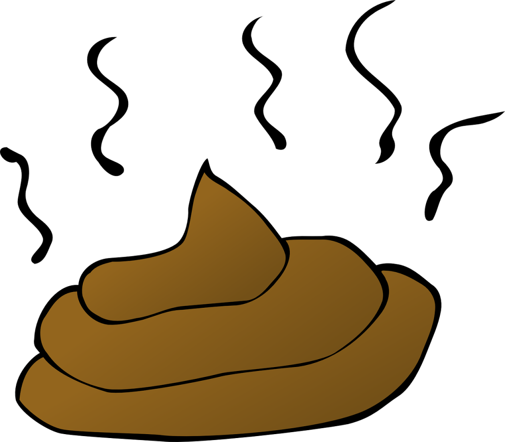 drawing of cat poop