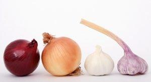 onions, garlic & shallot