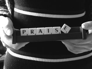praise-scrabble word; use praise to teach your cat to come when called by name