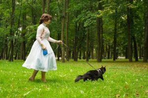 woman walking cat on retractable leash/harness