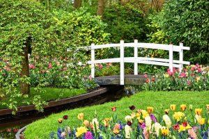 landscaped garden with bridge