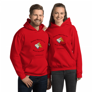 Cat Info Detective unisex-heavy-blend-hoodie-red with black print